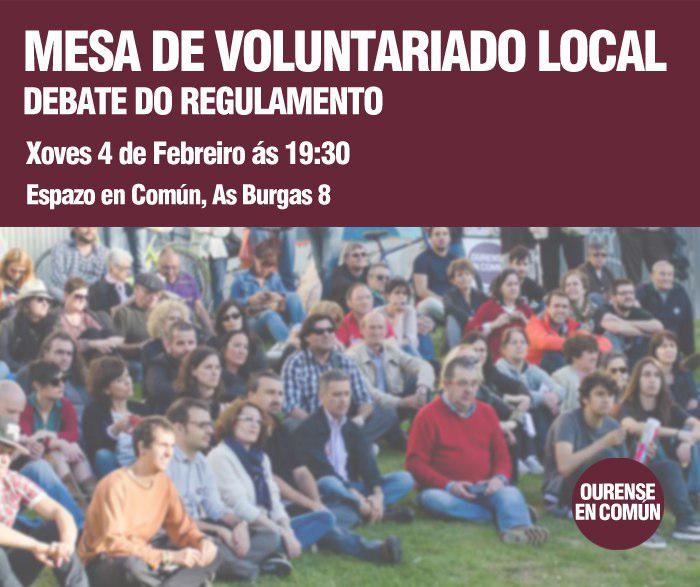 Debate: Mesa de Voluntariado Local